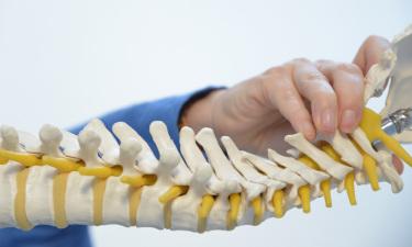 Anatomia del movimento è un metodo che fornisce una conoscenza anatomica finalizzata a proteggere il corpo e a migliorare il movimento.